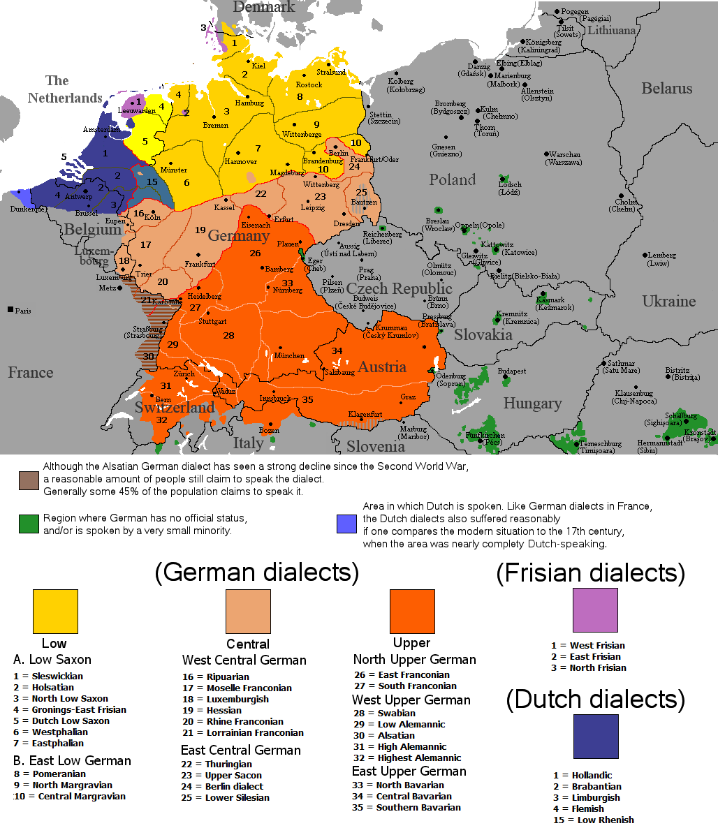germanic languages The official language of germany and austria and one of the official languages of switzerland the native language of approximately 100 million people it is an indo-european language.